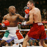 Универсиада 2013, виды спорта. Бокс